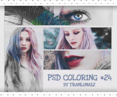 [ 210417 ] PSD coloring #24