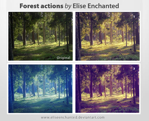 Forest Action by EliseEnchanted