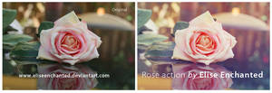 Rose action