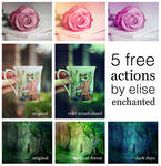 5 free photoshop actions