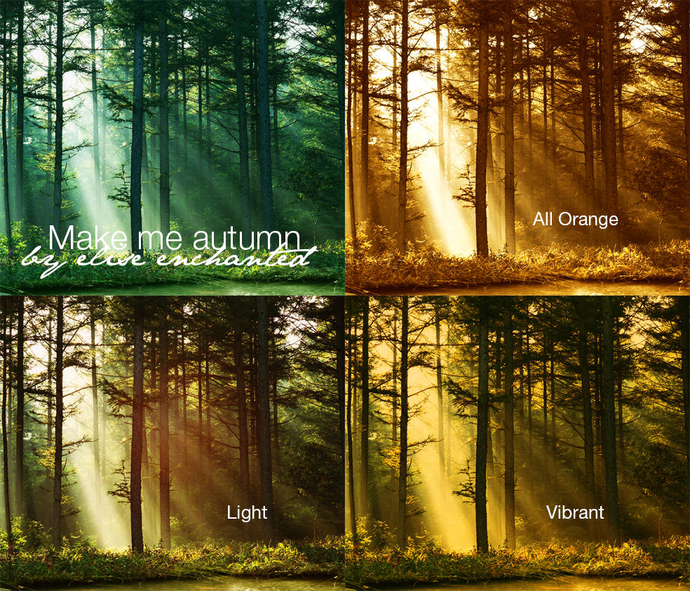 Make me autumn actions by EliseEnchanted