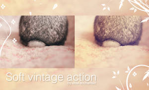 Soft vintage action by EliseEnchanted