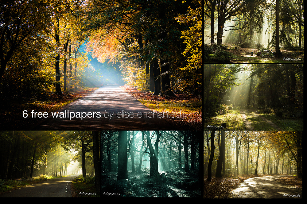 FREE Nature wallpapers by EliseEnchanted