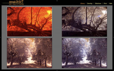 InfraRed Photography Preset