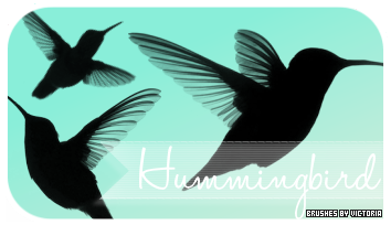 Hummingbirds Brushes by vintagevic