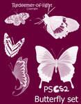 Butterfly brush Set CS2