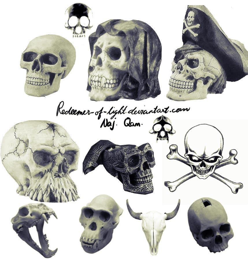 Skull brushes CS2 by NajlaQamber