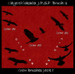 Crow Brushes Pack I