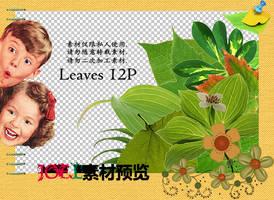 Joe.l's png - leaves 12P