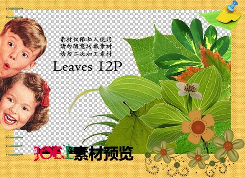 Joe.l's png - leaves 12P by joe-lashin