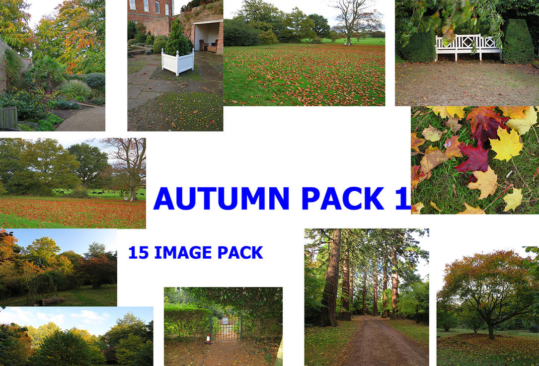 Autumn Stock Pack 15 Images by supersnappz16