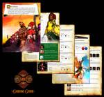 Hyrule Conquest Guide - Gerudo