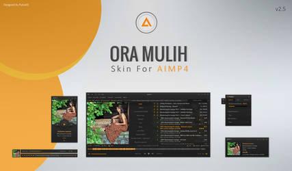 Ora Mulih v2.5 AIMP4 Skin by putra05