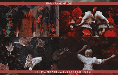 PSD#2 - Flames Of Love by Qhaines