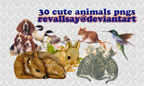 30 cute animals pngs by revallsay