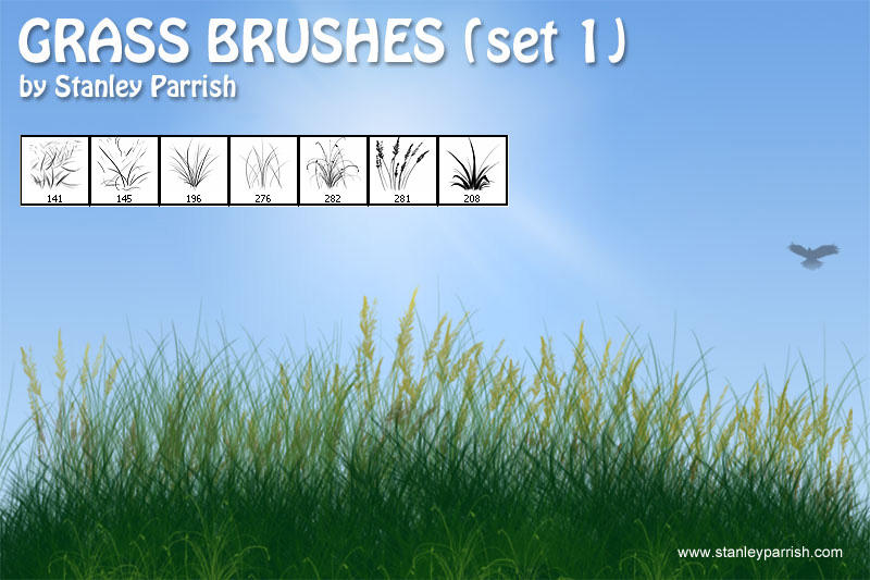 Grass Brushes set 1 by slizzie