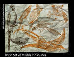 Brush Set 28 - Birds