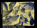 Brush Set 43 - Wings