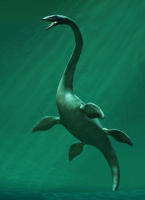 Dino Mystère ! - Page 4 Elasmosaurus_set_by_seleneyue