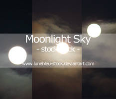 Moonlight Sky stock by LuneBleu-Stock