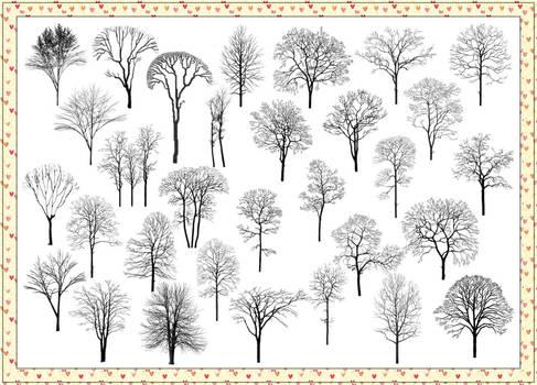 31 Withered Tree Photoshop Brushes