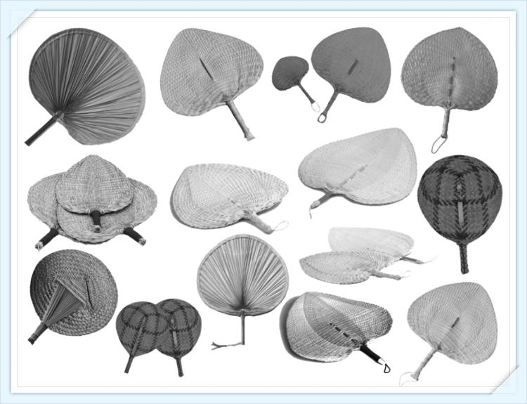 14 Realistic Cattail Leaf Fan Brushes