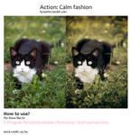 Calm fashion