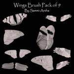 Wing Brush Pack