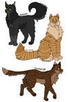 Lionblaze and Cinderheart's older kits