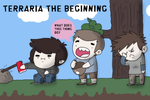 TERRARIA THE BEGINNING