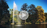 GIF - Rainbow in the park