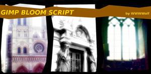 GIMP Bloom Perl-Fu script by wwwwolf