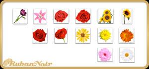 ImagePack 08 - Flowers