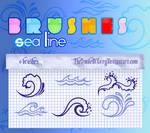 BRUSHES SEA