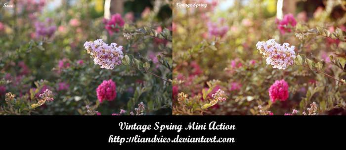 Vintage Spring Mini Action