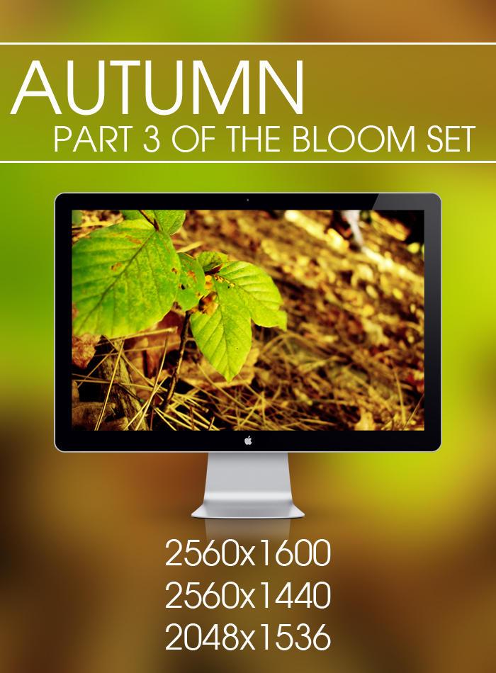 Autumn - Bloom Set by samjonesx
