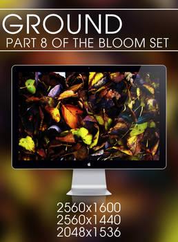 Ground - Bloom Set