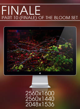Finale - Bloom Set