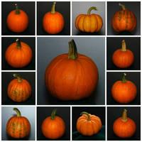 Pumpkin Stock by redwolf518stock