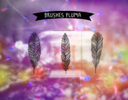 Pluma |Brushes| by Arcaangel