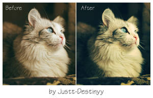 Photoshop Action 2 by JuStt-DeStinyy