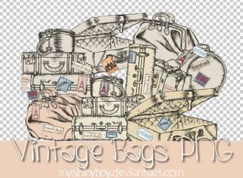 Vintage Bags PNG by MyShinyBoy