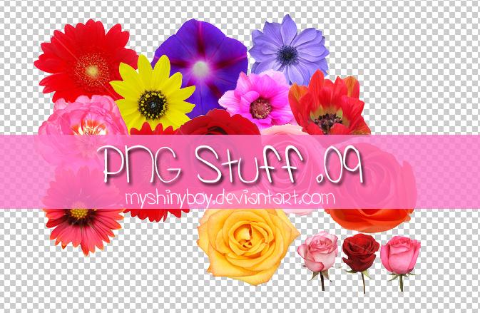 PNG Stuff .09 by MyShinyBoy