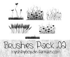 Brushes Pack .02 by MyShinyBoy