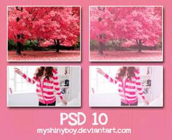 PSD .10 by MyShinyBoy