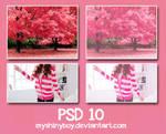 PSD .10