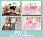 PSD .11