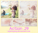 Action 29
