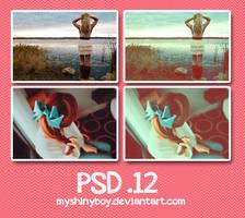 PSD .12 by MyShinyBoy