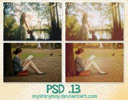 PSD .13 by MyShinyBoy